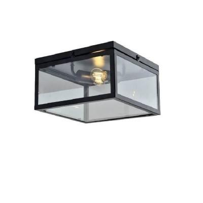 Δίφωτο ορθογώνιο φωτιστικό οροφής από μέταλλο και γυαλί
