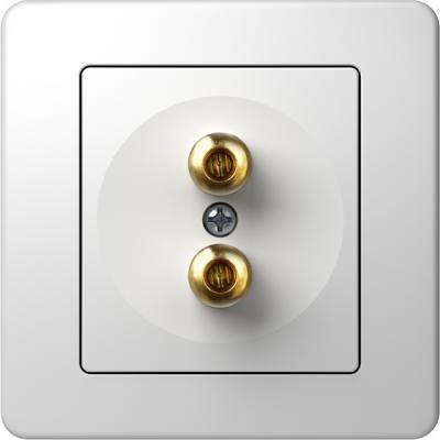 Πρίζα Hi-Fi ηχείων audio TEM