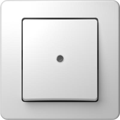 Απλός διακόπτης με λυχνία ένδειξης TEM