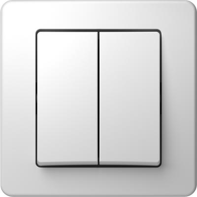 Διπλός διακόπτης 2 πλήκτρων - κομιτατέρ TEM